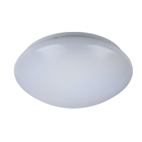 LED CEILING FIXTURE LITE 12W SMD5730 D250